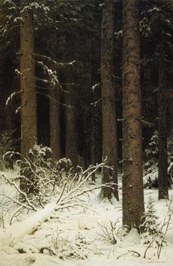Лес зимой (И.И. Шишкин)