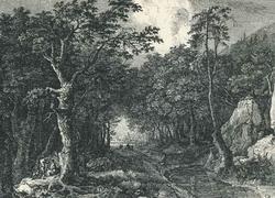 Дорога в лесу (Лантара)